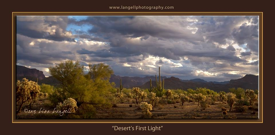 """Desert's First Light"""